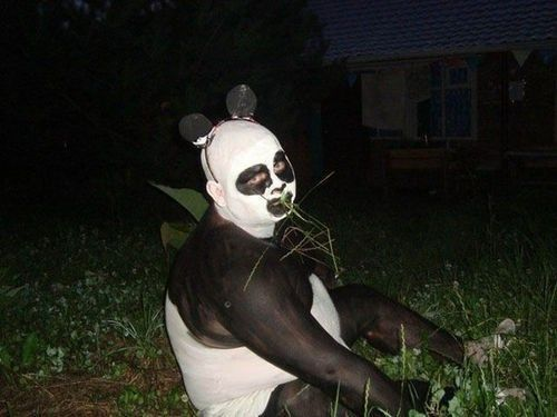 Not All Pandas Are Cute