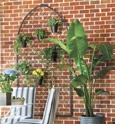 Arched Garden Trellis    Ballard Designs