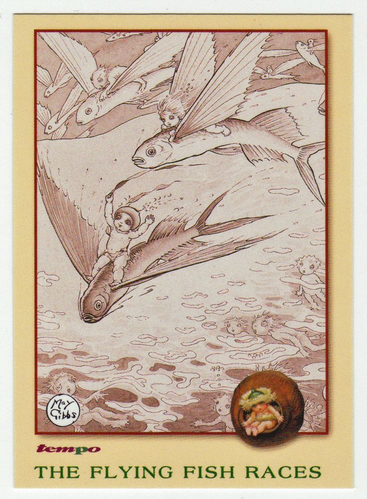 May Gibbs Cards # 42 - The Flying Fish Races