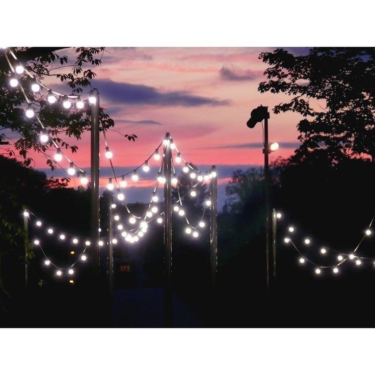 light bulbs in France