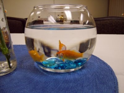 Neat Idea from my Sister-In-Law Allison!!! Since my fiance Jake likes fishing, we could do...goldfish centerpieces!!! :)