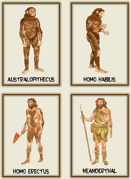 LA CLASE DE MIREN: mis experiencias en el aula: EVOLUCIÓN DEL HOMBRE
