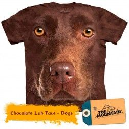 Chocolate Lab Face - Dogs