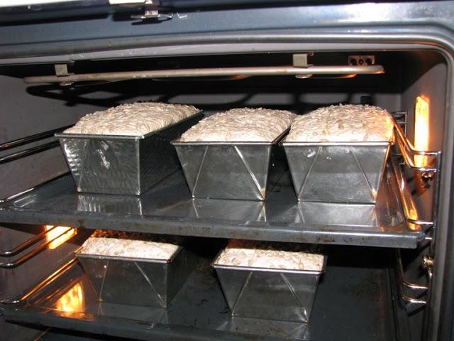 saftige og grove brød
