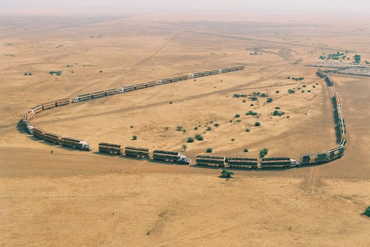 road trains. THESE ARE AT GLEN HELEN STATION WAITING THEIR TURN TO PICK UP BEEF FOR MARKET OR EXPORT.