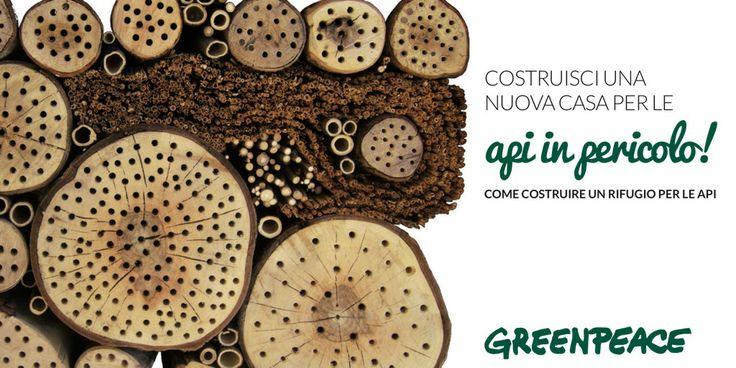 Salviamo le api con Greenpeace!
