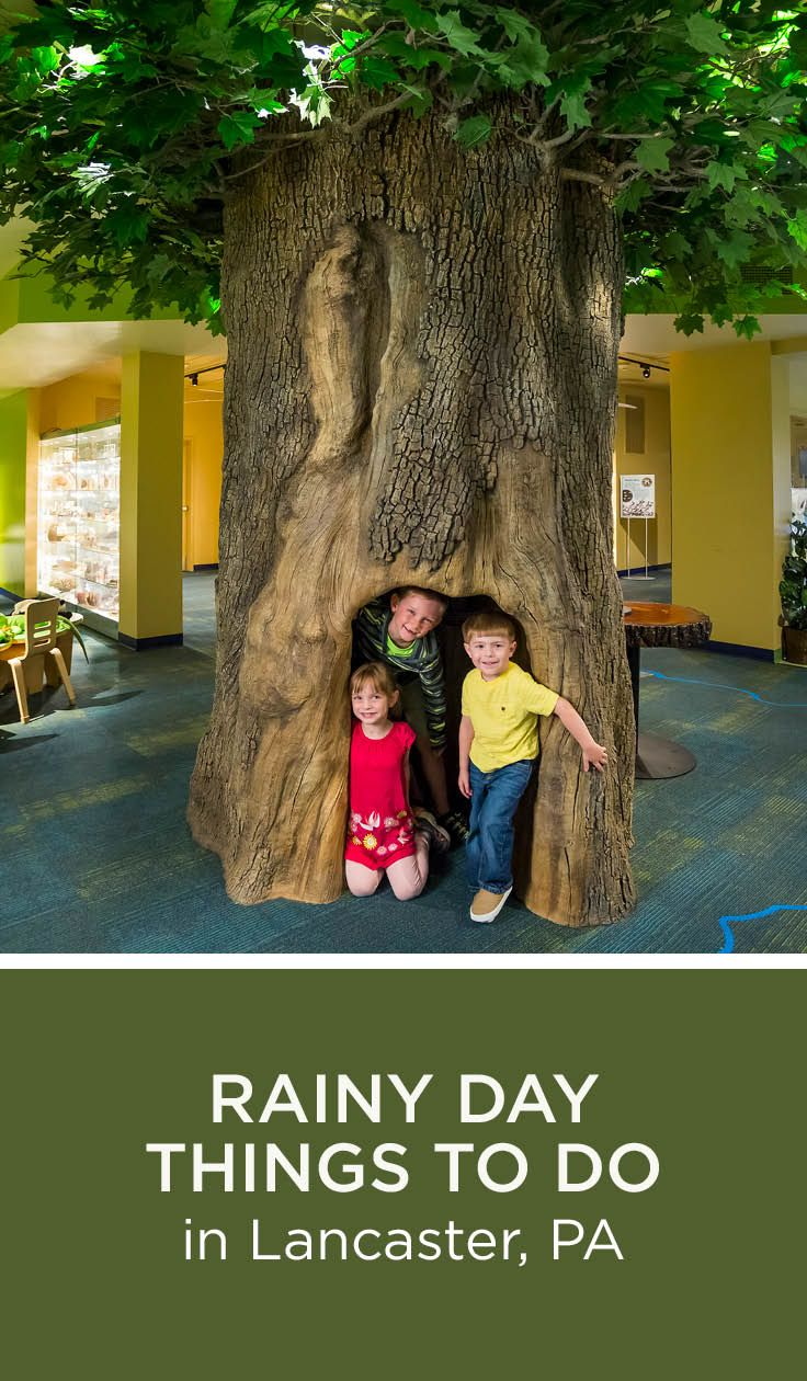 Rainy Day Things To Do In Lancaster Pa Just Because The Weather Is Dreary Doesnt Mean Your Day Has To Be Check Out These Indoor Activities That Are Fun
