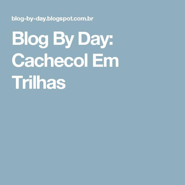 Blog By Day: Cachecol Em Trilhas