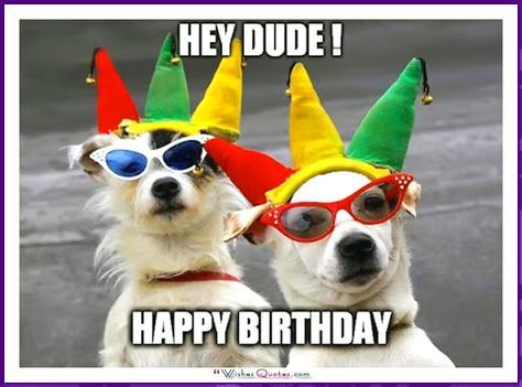 Funny Dog Birthday Meme: Hey Dude! Happy Birthday