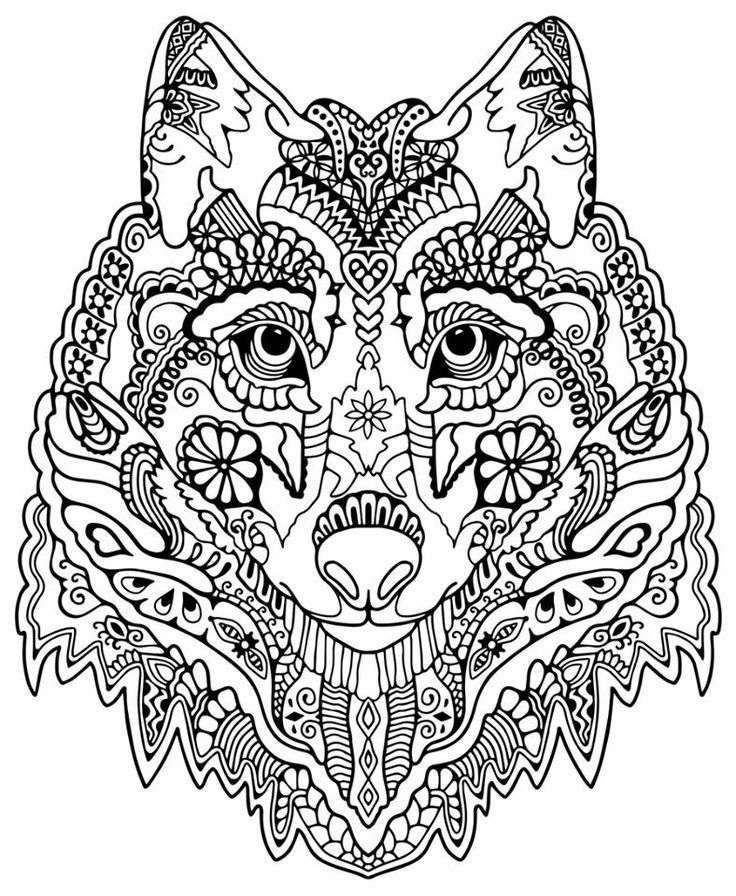 Pin By Virginia Solano On Owady In 2020 Animal Coloring Books Animal Coloring Pages Mandala Coloring Pages