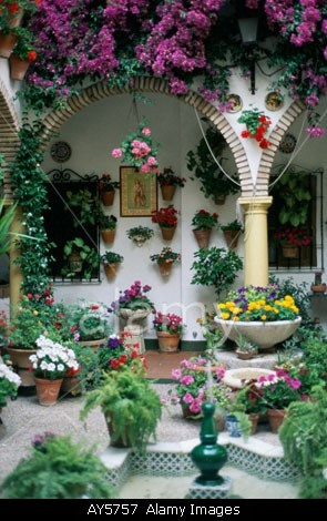 Cordoba May Patio Contest Festival Andalucia Andalusia Spain Flowers Galore  Courtyard   SEE More Images At