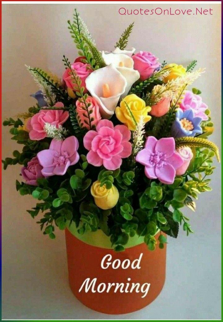 Good Morning Images Good Morning Flowers Good Morning Images Flowers Good Morning Flowers Pictures Flower wallpaper good morning