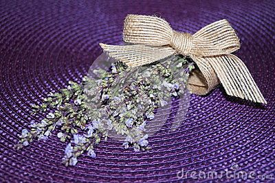 Wild lavender on a purple background