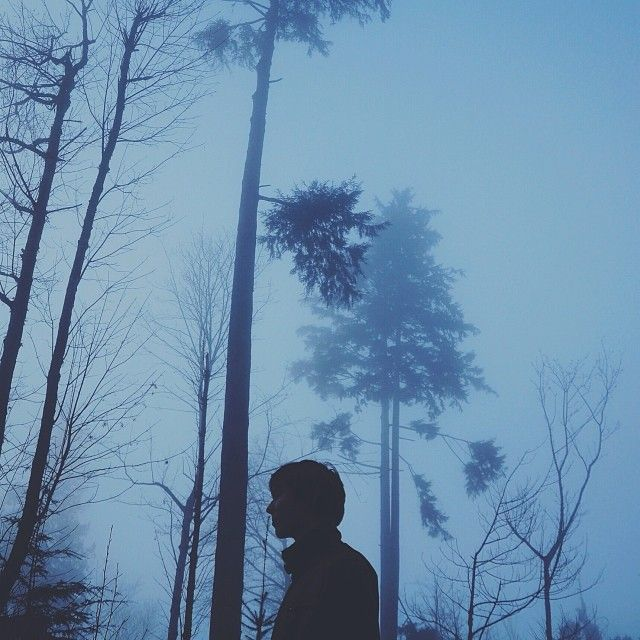 Caminando en un bosque solitario, cobijado por la densidad de la niebla, pierdes el miedo a los fantasmas porque te has convertido en uno.   José Salvador García Lázaro