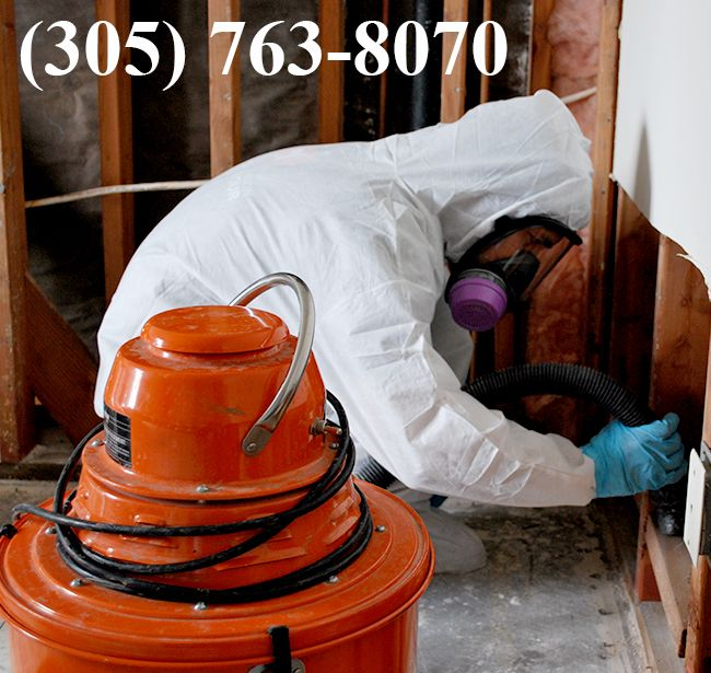 Black mold must be handled by qualified technicians since it is extremely toxic. Do not attempt to touch the black mold because it can release toxins that can float around your home and cause health problems.  More Details: http://miamimoldspecialist.com/