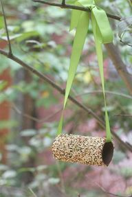 bird feeder with peanut butter and a toilet paper tube