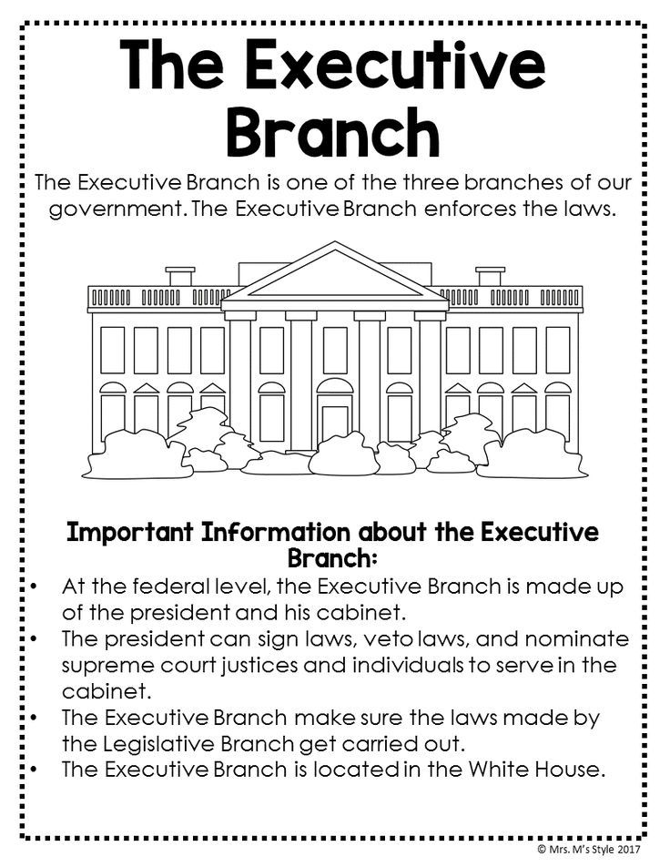 The Executive Branch Social Studies Anchor Chart Perfect For