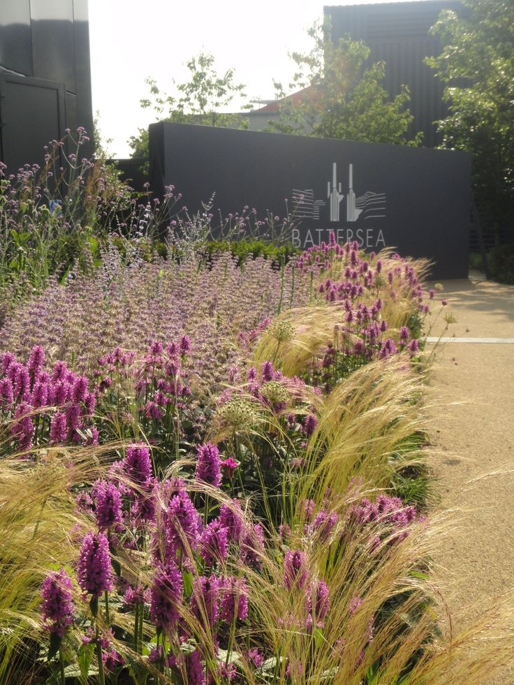 Perennial planting at Battersea Powerstation Pop-up Park. Lda Design (Cannon Ivers Lead Designer)