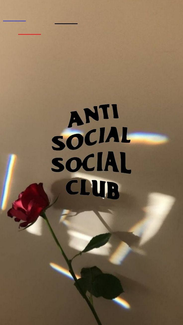 Aesthetic Wallpapers Anti Social Social Club Aesthetic Wallpapers Anti Social Social Club Anti Social Social Club Assc Es La Antimarca No Posee Una Filosofia