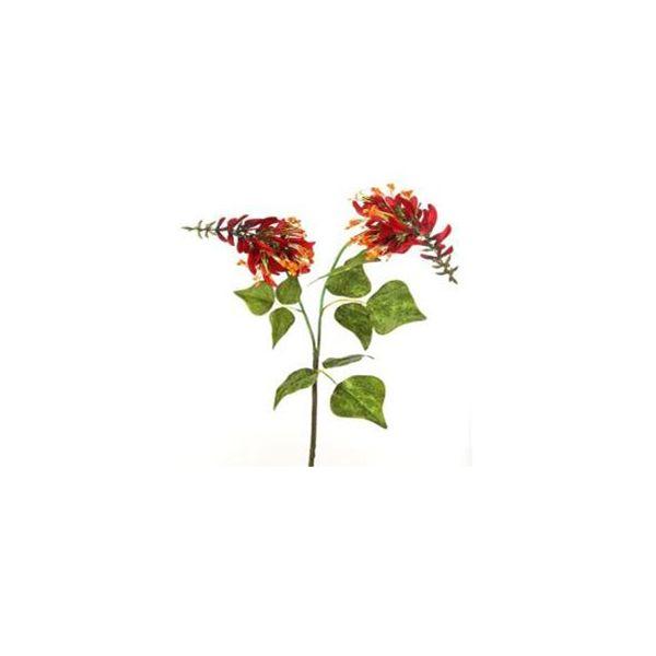 Tige double de fleurs du dragon rouge