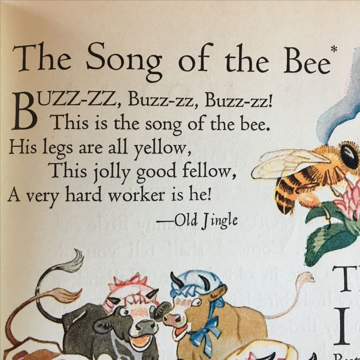 Fable book with the bee song!  So classic children's theme!