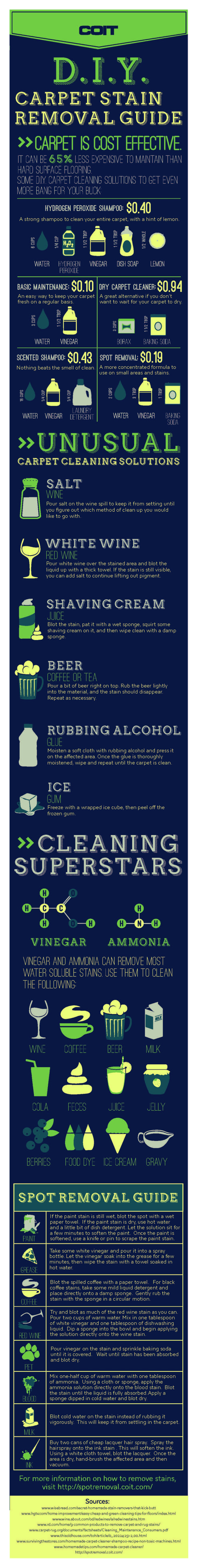 DIY Carpet Stain Removal Guide