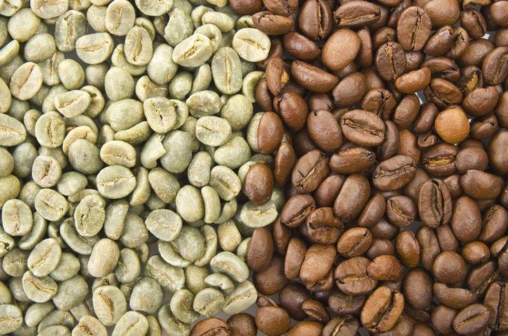 Secuencian genoma de la planta de café