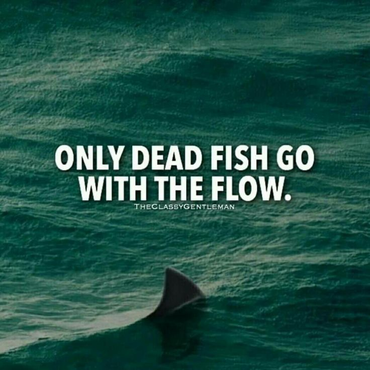 Fish Motivational Quotes: Best 25+ Guy Quotes Ideas On Pinterest