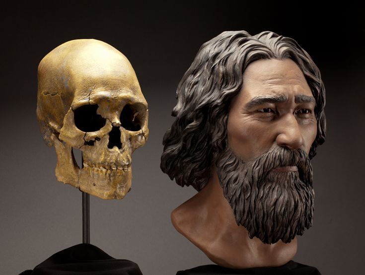 The Kennewick Man. Sculpted bust by StudioEIS, based on forensic facial reconstruction by sculptor Amanda Danning. Photo by Brittney Tatchell/Smithsonian Institution