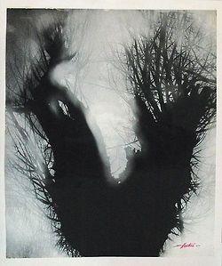 Edward Hartwig (1909-2003) - Wierzby (Willow)