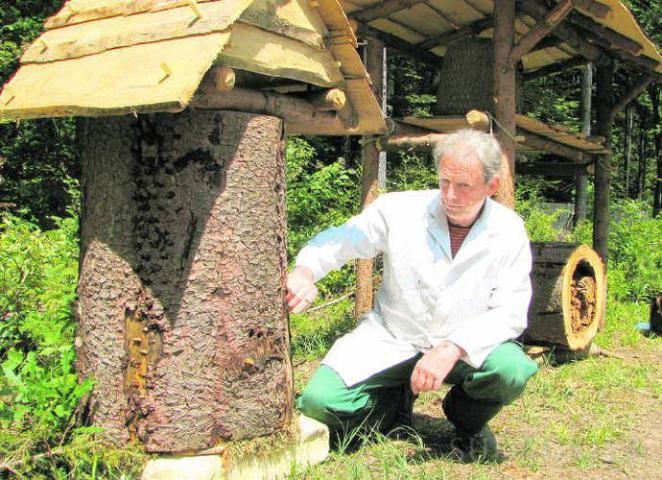 Good Imker Peter Frech zeigt an der Imker Station der Mittelalterbaustelle auf die Bienen die