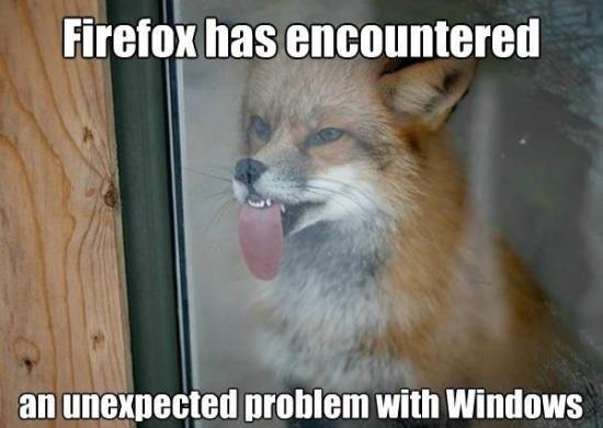 Firefox and Windows #funny #cute via Oh My Freaking Stars!