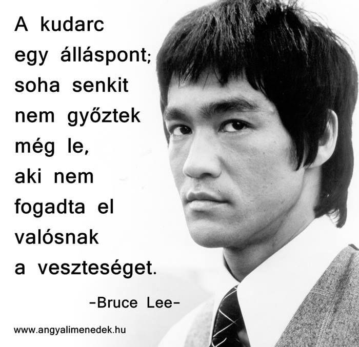 Bruce Lee gondolata a kudarcról. A kép forrása: Angyali Menedék # Facebook