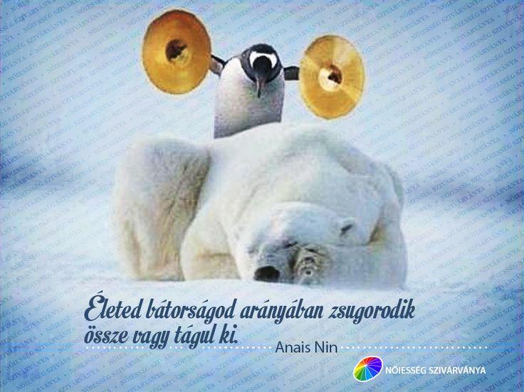 """""""Életed bátorságod arányában zsugorodik össze vagy tágul ki."""" - Anais Nin"""