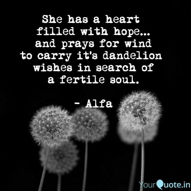 She has a heart filled with hope... and prays for wind to carry its dandelion wishes in search of a fertile soul. Dandelion wishes. Alfa #alfawrites #alfapoet #poetry #poem #poet #alfa Follow my writings on http://www.yourquote.in/alfa-holden-obl/quotes/ #yourquote