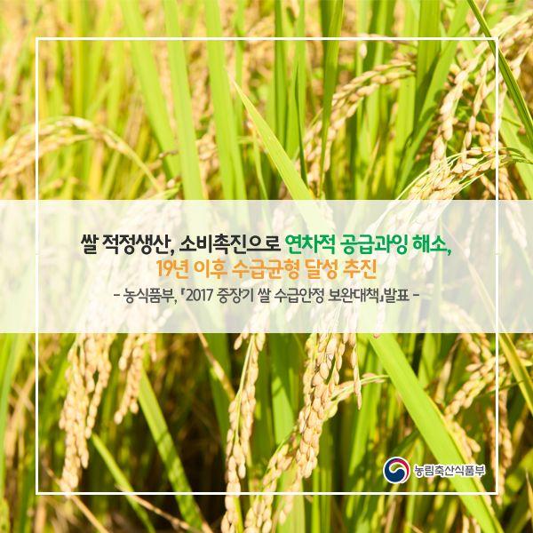 2017 중장기 쌀수급안정 보완대책  농림축산식품부에서 알려드리는  올해 쌀 정책  #쌀수급안정보완대책 #쌀정책 #농식품부 #농림축산식품부