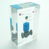 Special full colour 3D printed object embedded in clear acrylic