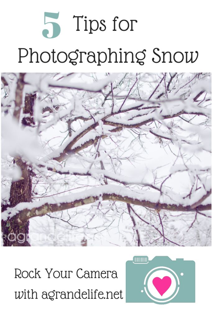 5 Tips for Photographing Snow