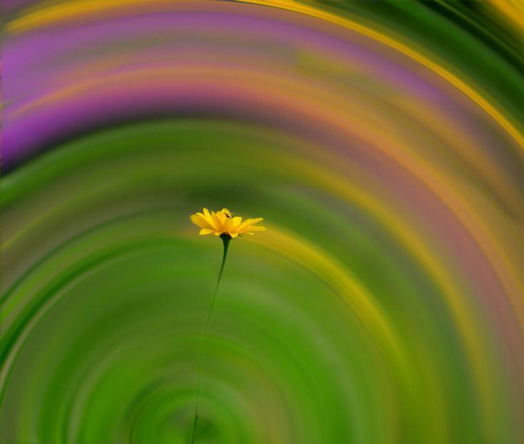 Circle of colors! by Aziz Nasuti on 500px