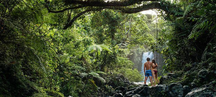 Taveuni | The official website of Tourism Fiji