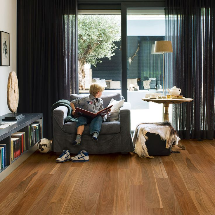 Spotted Gum (proposed Finish   Living And Kitchen Floor)
