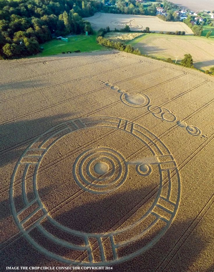 Crop Circle at Ark Lane (3), nr Stroud Green, Essex, United Kingdom. Reported 3rd September 2014