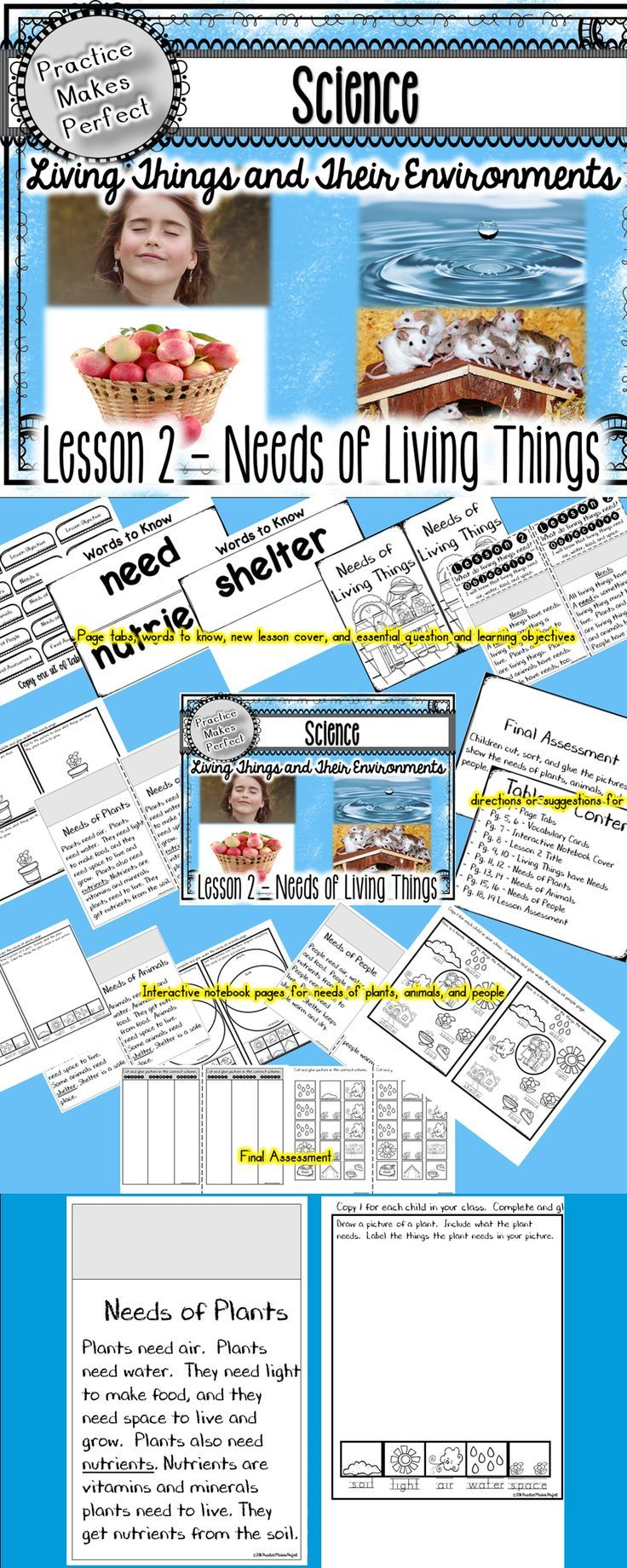 Primary science resource about the needs of living things. Lesson 2 in living things and their environments.:
