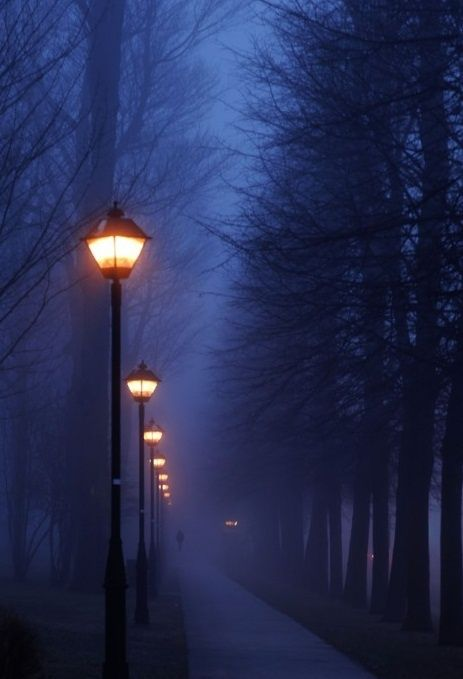 Fog, Paris, France: Impressionist Paintings, Walks, Blue, Street Lamps, Paris France, Will, Dark Side, Streetlights, Street Lights