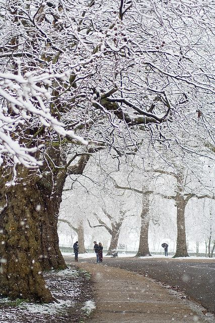 fabulousplaces:  Snowy Finsbury Park (London, England) by Alex.MacDonald on Flickr.