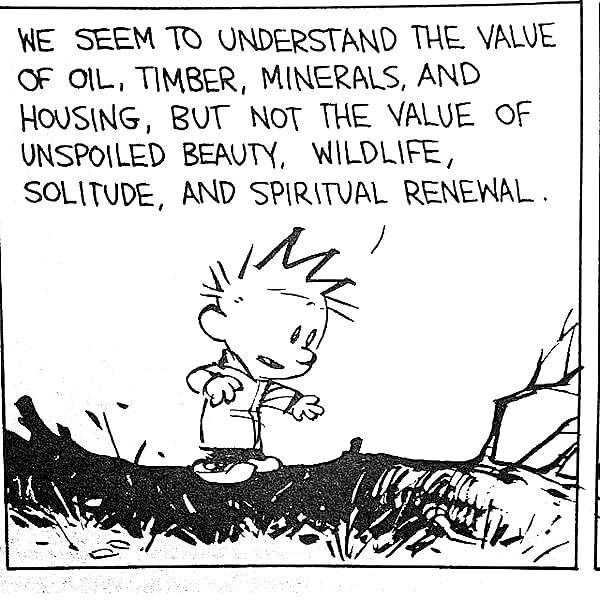 Calvinism | Calvin and hobbes quotes, Calvin and hobbes ...