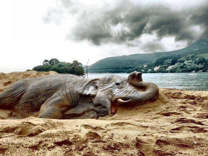 Andoni Bastarrika - Sand sculptures (con imágenes) | Arte, Arte ...
