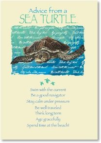Blank Card With Quote Saying Advice From A Sea Turtle