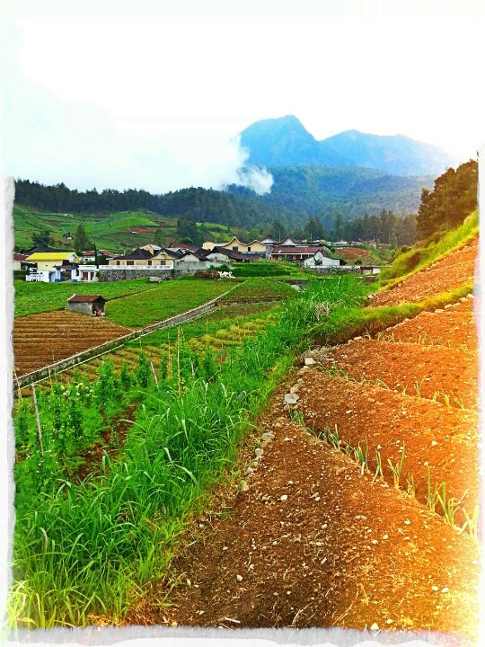 Tawangmangu, city amongst the beauty and the mists of Mount Lawu.