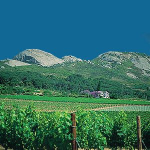 Paarl mountains, Western Cape.